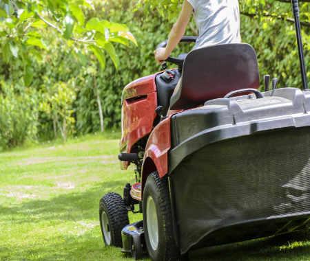 devis tonte pelouse travaux de jardin dax