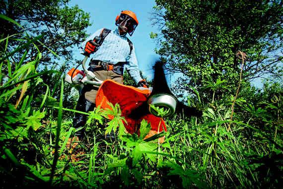 travaux de jardinage et debroussaillage