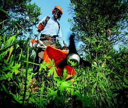travaux jardinage devis debroussaillage dax